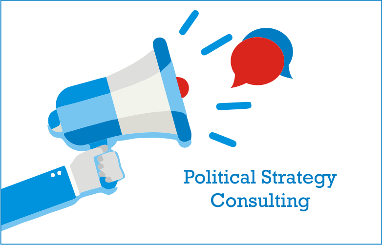 Political Strategy Consulting